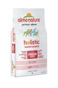 Корм ALMO NATURE Holistic для Взрослых собак крупных пород с говядиной (Large Adult Beef and Rice)