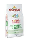 Корм ALMO NATURE Holistic для Взрослых собак  средних пород с ягненком (Medium_Lamb)