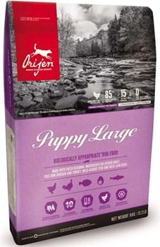 Беззерновой сухой корм ORIJEN Puppy Large для щенков крупных пород - фото 10282