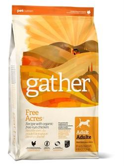 Органический Беззерновой сухой корм GATHER Free Acres Chicken DF для собак с курицей - фото 10388