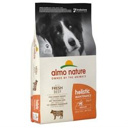 Сухой корм ALMO NATURE Medium_Beef and Rice для взрослых собак средних пород с говядиной и рисом - фото 15113