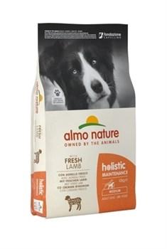 Сухой корм ALMO NATURE Medium Lamb для взрослых собак средних пород с ягненком - фото 15205