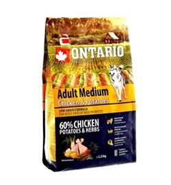 Сухой корм ONTARIO для взрослых собак средних пород с курицей и картофелем - фото 17304