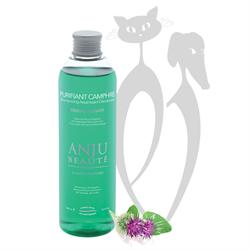 Шампунь-концетрат  1:5 Anju Beaute Очищающий и Антисептический: камфора и корень лопуха (Purifiant Camphre Shampooin