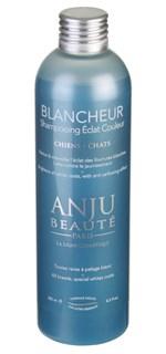 Шампунь-концетрат Anju Beaute  Идеальный Белый окрас  (Blancheur Shampooing), 1:5 (AN33), 0.25 - фото 4727