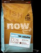 Беззерновой сухой корм NOW Fresh Grain Free Fish Adult Recipe с форелью и лососем для взрослых кошек с чувствительным пищеварением