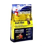 Сухой корм ONTARIO для взрослых собак малых пород с янгенком и рисом
