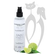 Спрей Anju Beaute Ультра-Блеск (Brilliance Shining Spray) (AN910), 0.15
