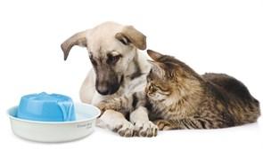 Автопоилка для кошек и собак Feed-Ex Lotus (PW01)