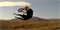 Тренировочный снаряд Puller (Пуллер) Standard для собак средних и крупных пород D 28 см - фото 11053